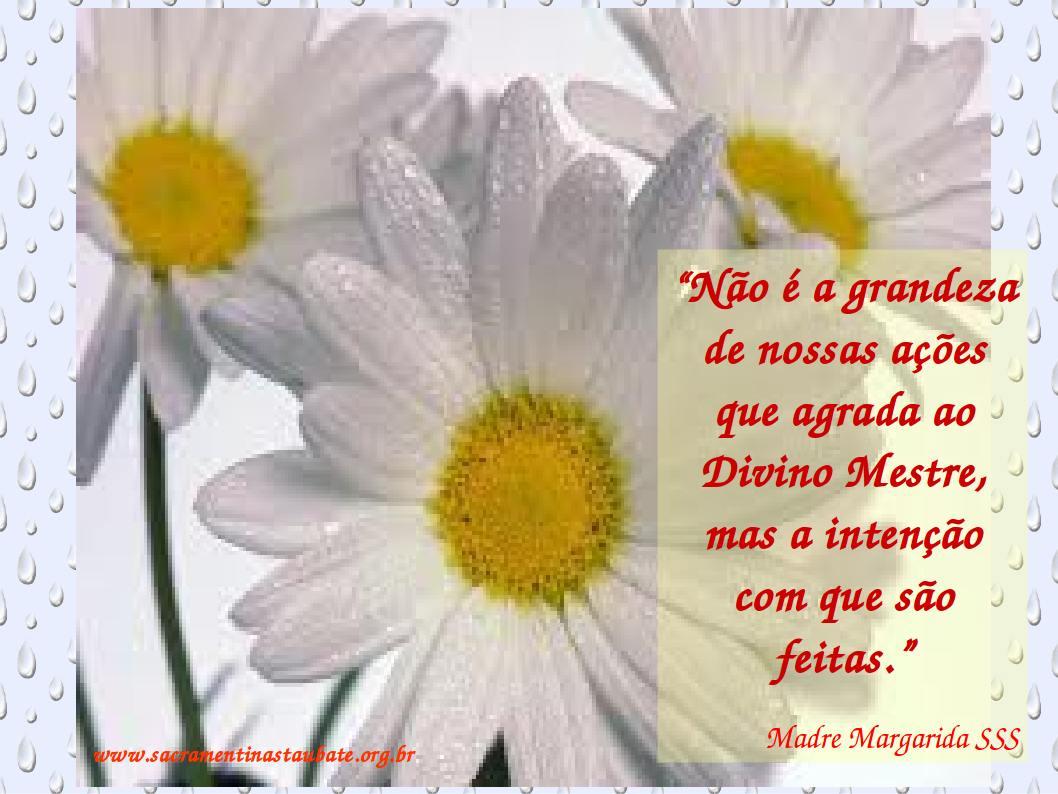 Pensamentos Madre Margarida